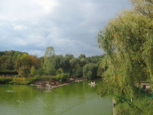 Pond-Sofia-Zoo