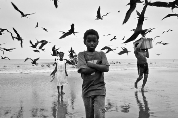 Black Boy on The Beach With Seaguls