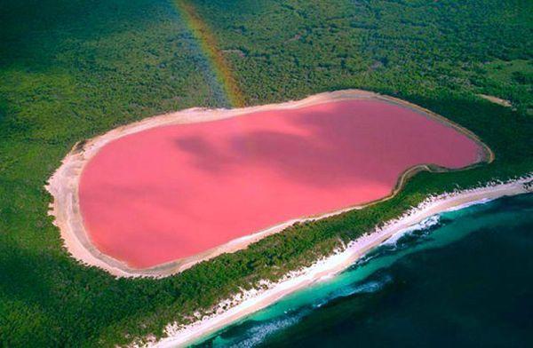 The Pink Lake in Australia - Lake Hiller