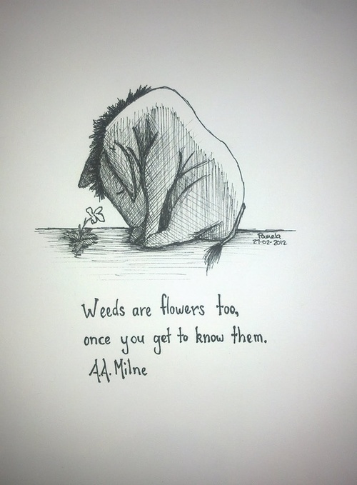 winnie the pooh quote weeds are flowers too
