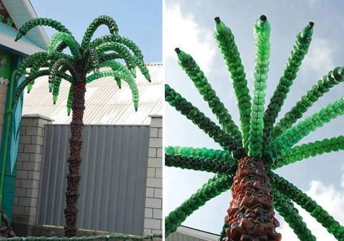 DIY Palm