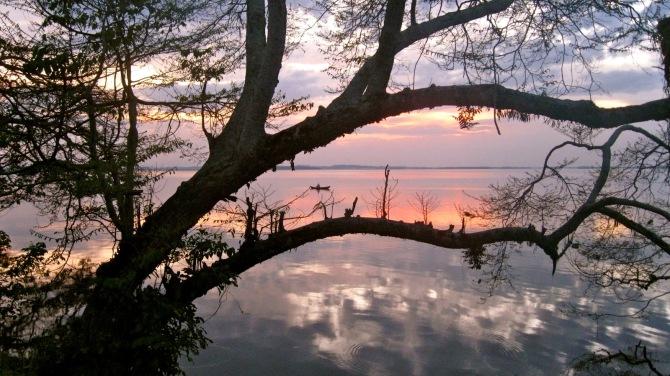 Lake Nabugabo - Uganda - Africa