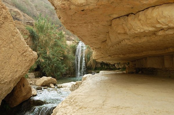 Nahal David Desert Oasis in Israel