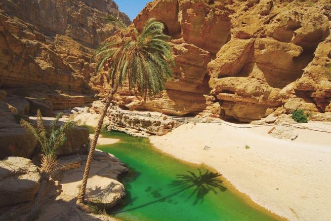 Wadi Shab Oasis Oman