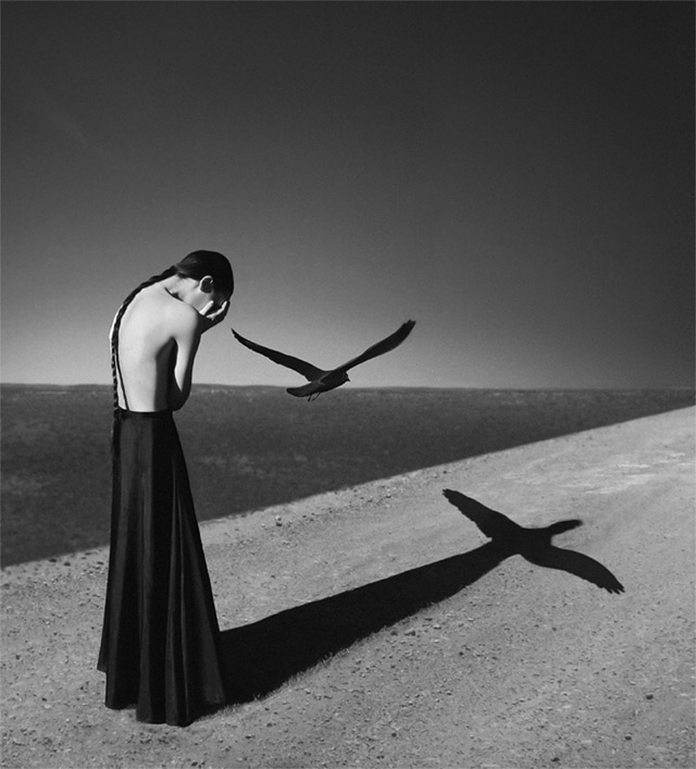 Black and White by Noell Oszvald