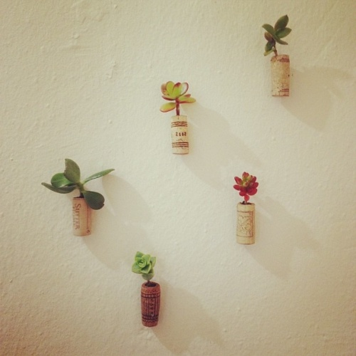 DIT Wall Project With Wine Cork
