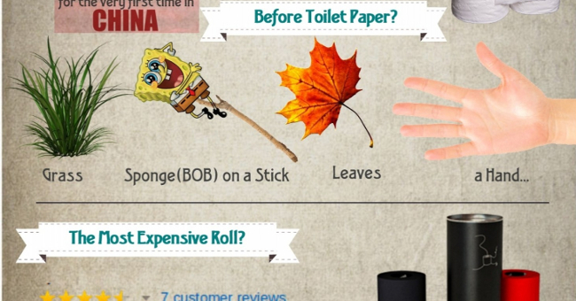 Fun Facts About Toilet Paper Infographic