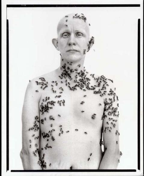 beekeeper in the american west portrait