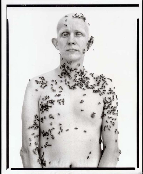 beekeeper in the american west portrait